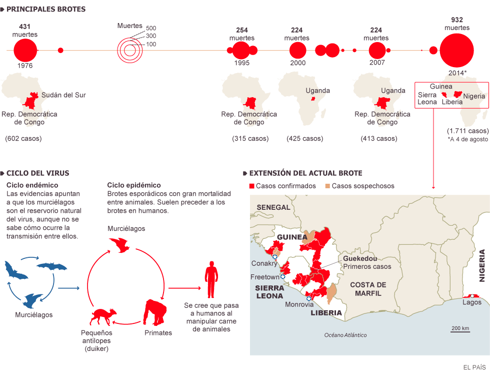 Virus Ébola, miles de personas muertas en África: Guinea, Liberia, Sierra Leona, Nigeria, Mali, República Democrática del Congo... 1407319509_229063_1407334977_noticia_normal