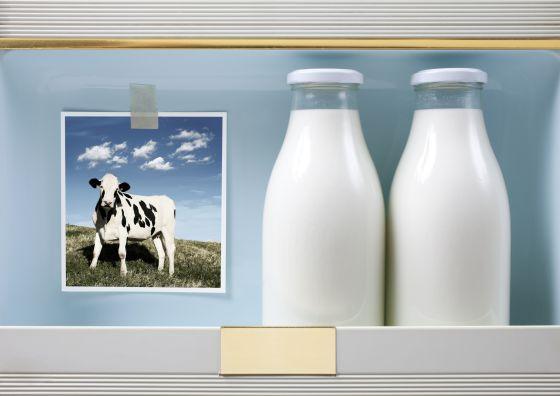 La leche de vaca gana a la de soja