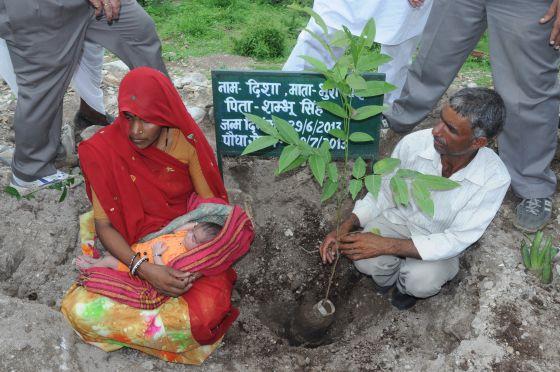 Pura y su marido Shubhum Singh plantan un árbol en honor al nacimiento de su hija Disha, en Piplantri (India), en junio de 2013.