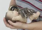 Una piel de silicio permite sentir el calor, la humedad y caricias