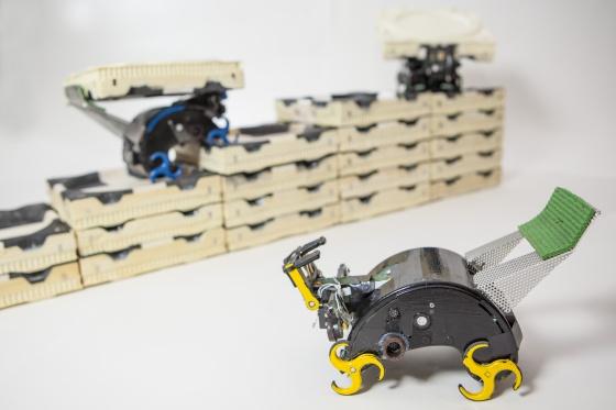 Tres robots Termes.