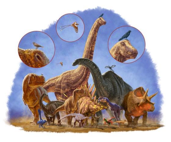 El abanico de tamaños de los dinosaurios era enorme.
