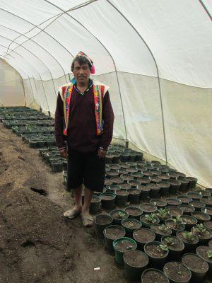 Para entrar al invernadero, donde preservan y cultivan más de 1.000 variedades de papa, es necesario desinfectarse con alcohol y limpiar los zapatos en cal.