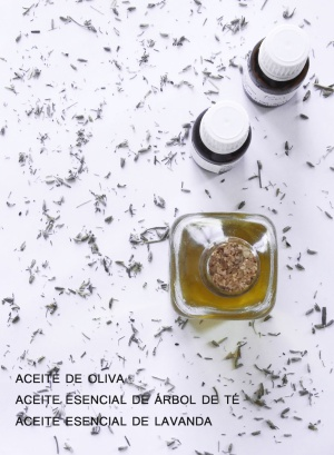hierbas para prevenir la gota sintomas del acido urico o gota como bajar acido urico alto