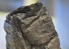 Recuperan textos de un papiro calcinado por el Vesubio