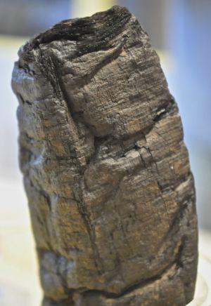 La erupción del volcán sometió al papiro 'PHerc.Paris. 4' a temperaturas de 320º. Cualquier intento de desenrollarlo lo rompería.