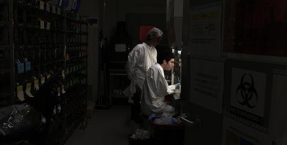 Dos investigadores en el Centro de Biología Molecular Severo Ochoa.