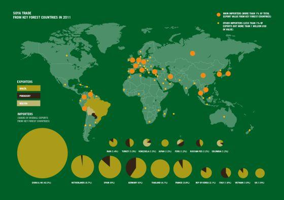 España es el tercer exportador mundial de la soja que se cultiva en lo que no hace mucho era selva amazónica.