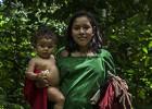 Asháninkas, guardianes de la selva