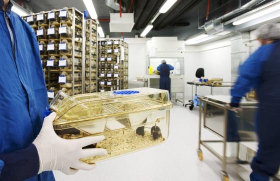 Animalario del Parque de Investigación Biomédica de Barcelona.