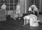 Si este es tu cuerpo, así es cómo lo tienes que ejercitar en el gimnasio