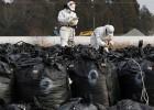 Las secuelas de Fukushima