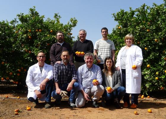 Equipo de Manuel Talón (de pie, en el centro) en el Instituto Valenciano de Investigaciones Agrarias.