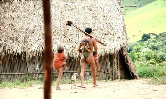Yanomami, os humanos com maior variedade de bactérias