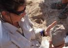 Las herramientas de piedra más antiguas no son humanas