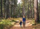 Salve un bosque desde la cola del supermercado