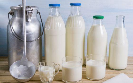 Cómo responder al típico que dice que la leche es mala