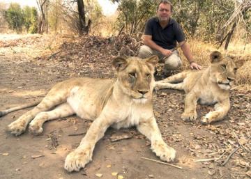 Camina con leones (en vez de matarlos)