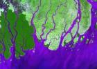 Los grandes deltas del mundo sufrirán mayores inundaciones