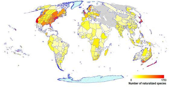 El ser humano ha cambiado de sitio 13.000 especies de plantas