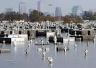 El rastro del Katrina a tres voces