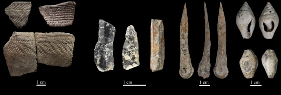 Restos neolíticos hallados en la Cova Bonica (Barcelona).