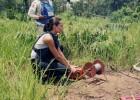 Angelina Jolie contra la solidaridad pagada