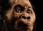 Hallada una gran sima de huesos con una nueva especie humana