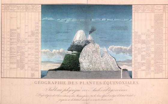 El 'Tableau physique' original muestra todas las características físicas, climáticas y ecológicas del volcán Chimborazo.