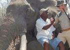 Un cazador alemán mata al elefante más grande de Zimbabue