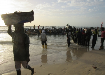 Mar de fondo en Mauritania