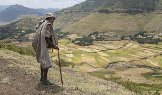 Campos rehabilitados junto a la aldea de Raya Azebo (Tigray, Etiopía)