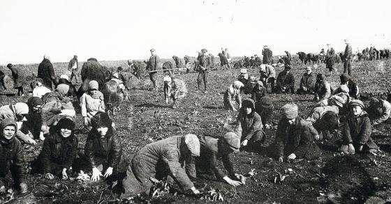 En Ucrania, Gareth Jones se encontró granjas colectivas y campesinos que morían de hambre.