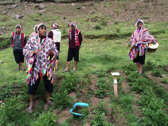 Agricultores en el Parque de la Papa Pisaq, CuZco, Perú