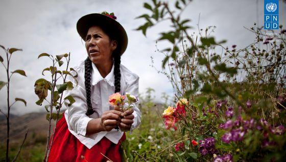 Manejo Sostenible de la Tierra en Apúrimac, Perú.