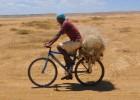 La Guajira no quiere tener más sed