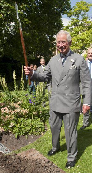 Carlos de Inglaterra plantando un árbol.