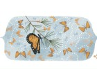 Google dedica un 'doodle' al santuario de la mariposa monarca