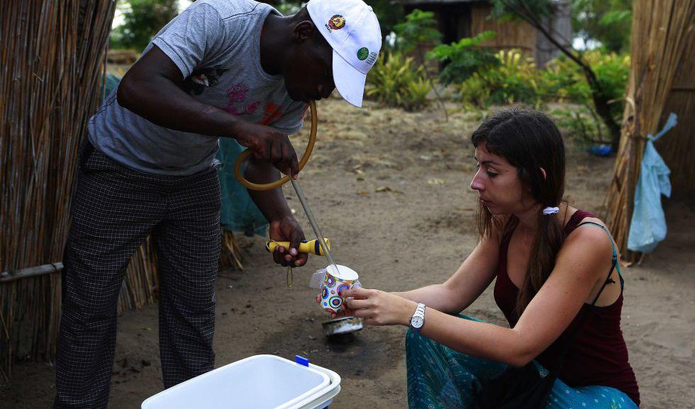 Celso Munguambe y Lucía Fernández trabajando en la captura de mosquitos vivos.