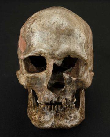 Cráneo del yacimiento de Dolnte Vestonice, en la República Checa