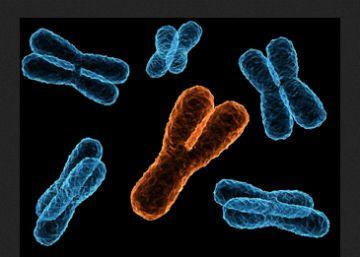 El enigma del origen de la célula moderna
