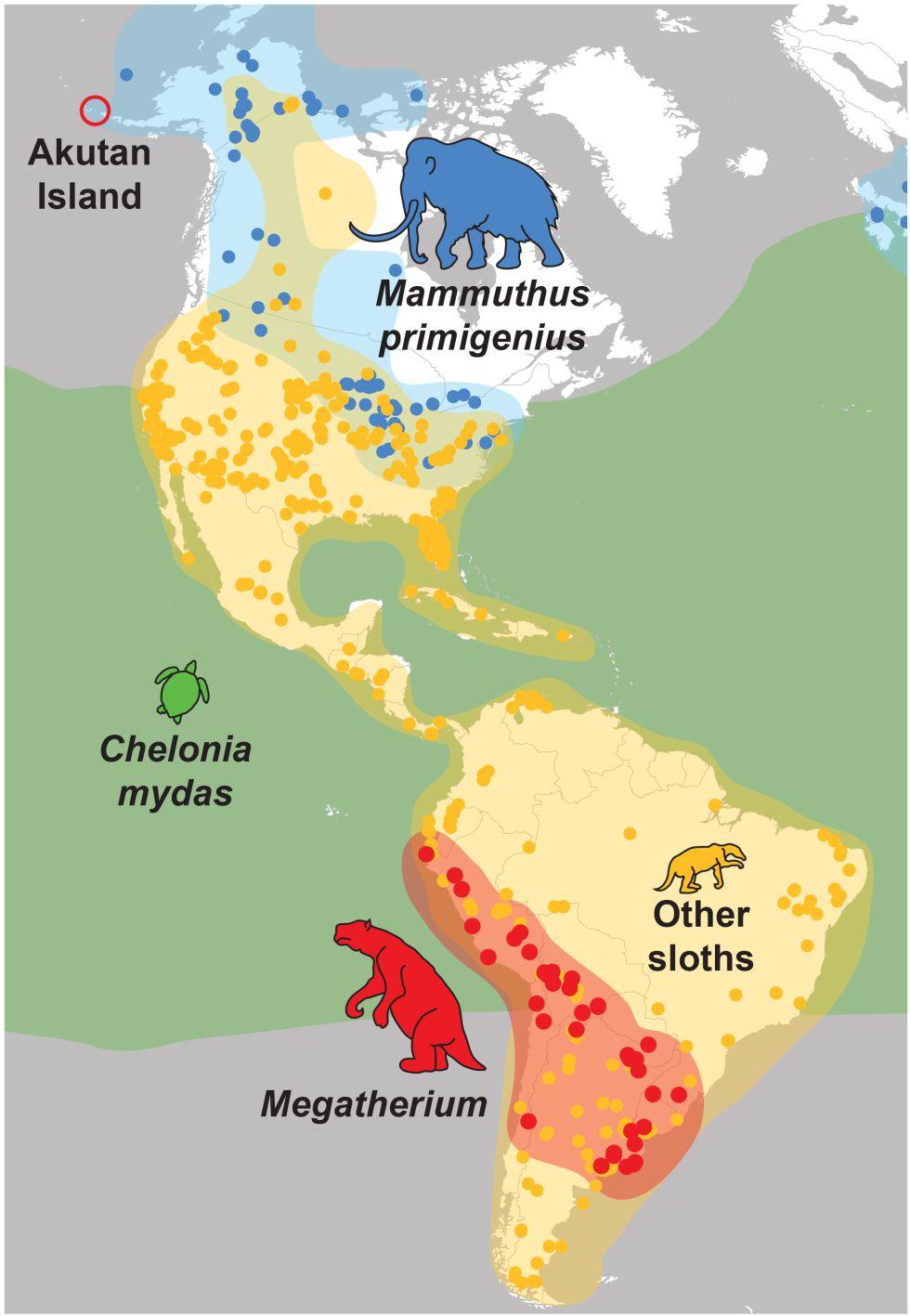 Distribución de especies en América.