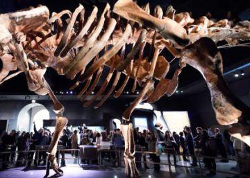 La cena en la que nunca se sirvió carne de mamut