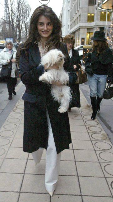 ¿Qué perros de famosos cogerán el metro de Madrid?