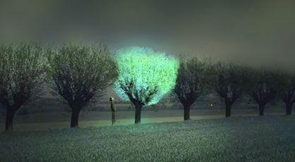 Árboles luminosos para sustituir las farolas en las calles de las ciudades