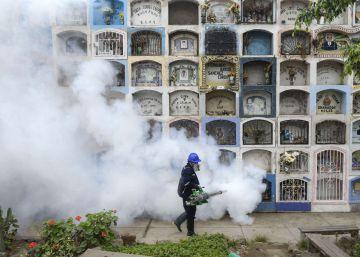 La guerra de la ciencia contra el mosquito del zika