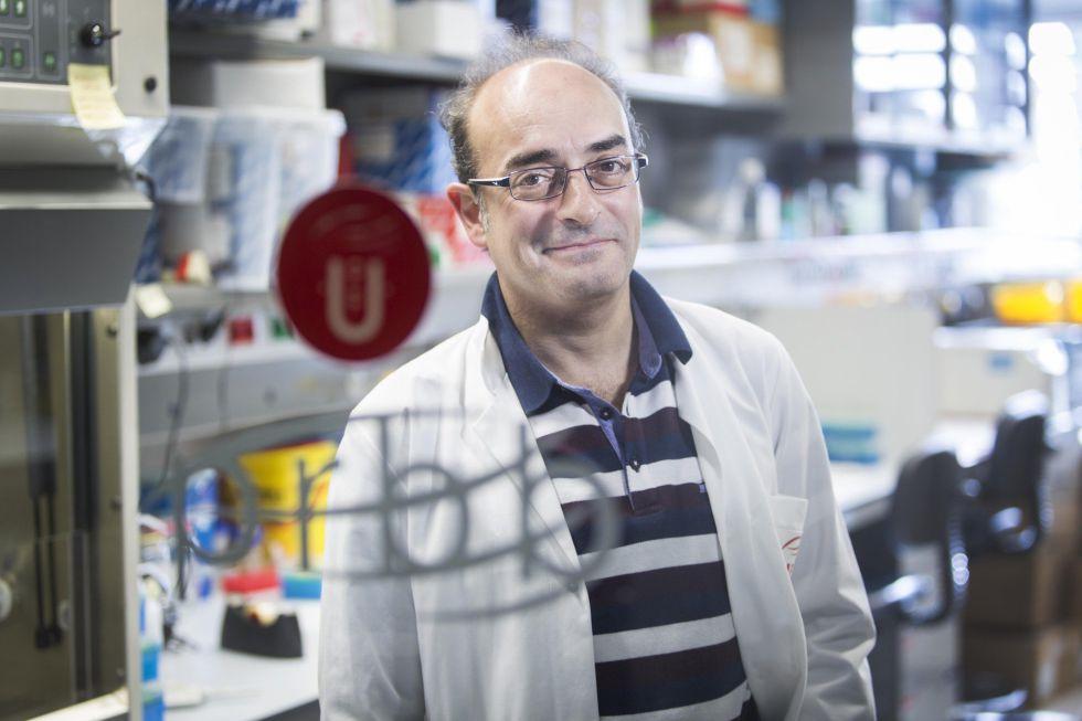 El biólogo evolutivo Carles Lalueza-Fox, en su laboratorio de Barcelona.
