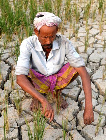 La tierra de cultivo seca de un granjero en Assam (India) en 2014.