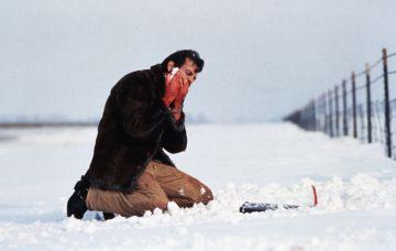 Carl Showalter, interpretado por el actor Steve Buscemi, es un fraude de matón a sueldo que sufre de verborrea y además es incapaz de rematar el crimen.