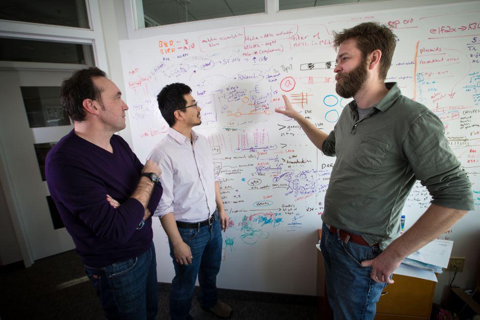 Cédric Feschotte, Edward Chuong y Nels Elde, los tres autores de la investigación.rn
